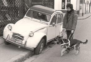 Mr Romero éduque un de ses premier berger allemand