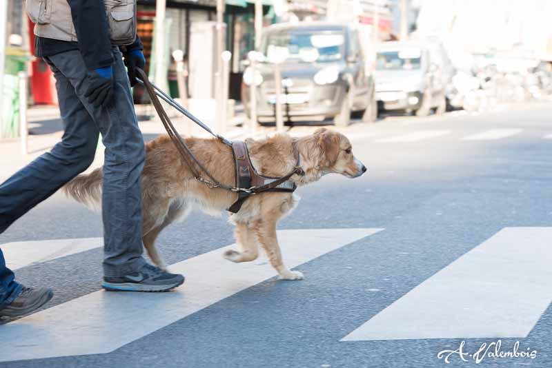 traversée de rue