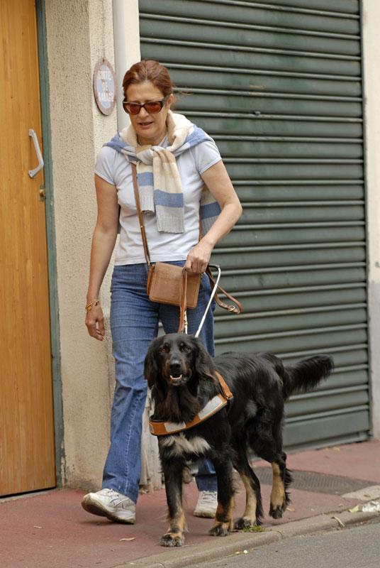 Un chien guide et sa maitresse