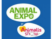 Les chiens guides à Animal Expo